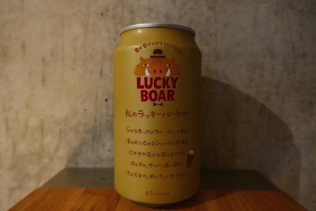 Lucky boar2