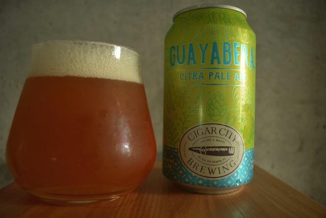 Guayabera citra ale2